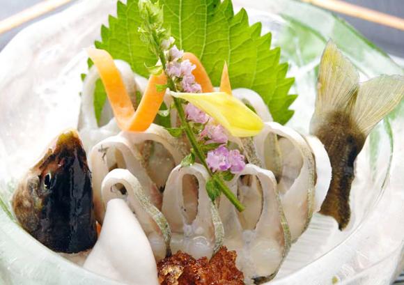 ayu(sashimi)