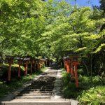 新緑の鞍馬寺